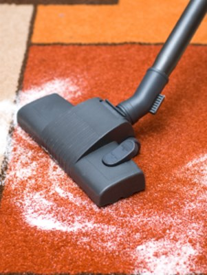 Carpet odor removal in Avondale Estates by Clean Scene Pro