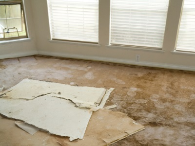 Water damage restoration in Pine Lake by Clean Scene Pro