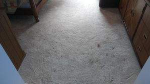 Before & After Carpet Cleaning in Dunwoody, GA (1)