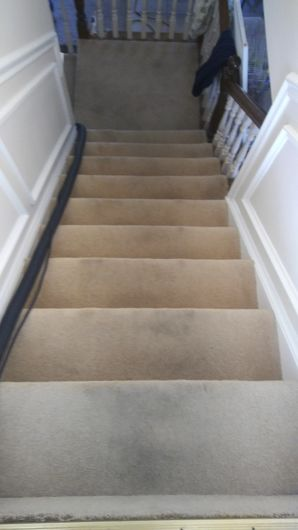 Before & After Carpet Cleaning in Loganville, GA (1)