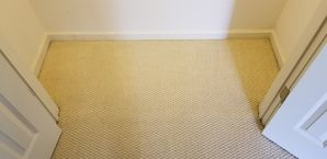 Before & After Carpet Cleaning in Atlanta, GA (2)