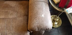 Before & After Upholstery Cleaning in Lilburn, GA (1)