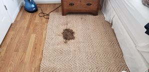 Before & After Rug Cleaning in Suwanee, GA (1)