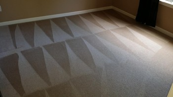 Carpet Cleaning by Clean Scene Pro in Lawrenceville, GA