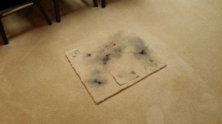 Carpet Repair in Loganville, GA