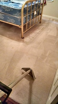 Carpet Cleaning & Pet Stain Removal in Lilburn, GA