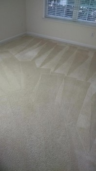 Carpet Cleaning in Atlanta, GA