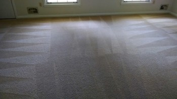 Carpet Cleaning by Clean Scene Pro